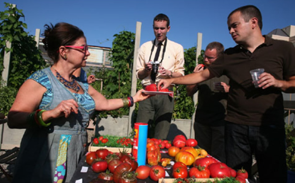 Vivian Reiss at her rooftop tomato garden at 124 Merton Street Toronto Office Bldg